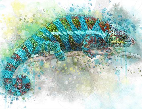 Dobry izły kameleon: naśladownictwo wżyciu społecznym